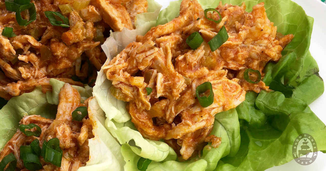 buffalo chicken inside lettuce wraps